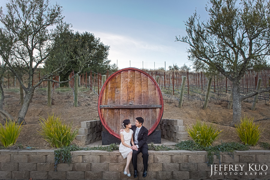 mountain_winery_wedding_0073_portraits